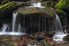 5 wody Zdjęcie Stock