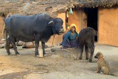 5 życia rajasthani wioska Zdjęcia Royalty Free
