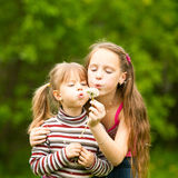 5 year old and 11 year old girls blowing dandelion Stock Photos
