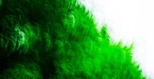 5 zielone abstraktów textured Fotografia Royalty Free