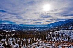 50个cludy日高速公路天空雪结构树冬天 免版税图库摄影