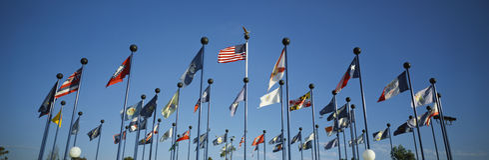 50 национальных флагов Америка Стоковая Фотография RF
