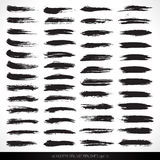 50 dry vector grunge brushes. Set of hq dry vector grunge brushes  for design and painting Royalty Free Stock Photography