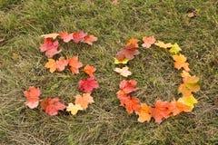 50 fogli di autunno Fotografia Stock Libera da Diritti
