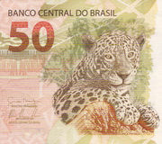 50 reais banknote from brazil. Jaguar (panthera onca) artwork on 50 reais banknote from brazil stock image