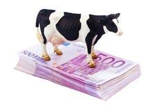 许多500张钞票的欧元货币 免版税库存照片