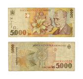 5000 lei. Old Romanian money Royalty Free Stock Image