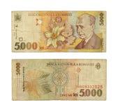 5000 leus Imagem de Stock Royalty Free
