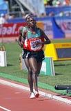 5000-Meter-Männer Kenia Lizenzfreies Stockbild