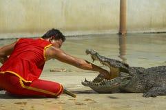 5001 krokodil-6 royalty-vrije stock foto's
