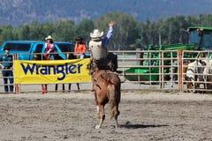 52nd årliga pro rodeo Fotografering för Bildbyråer