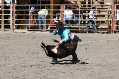 52nd årliga pro rodeo Arkivfoton
