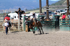52nd Annual Pro Rodeo Stock Images