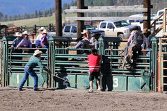 52nd Pro rodeio anual Foto de Stock