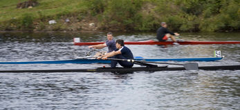 53 regatta stuart för 54 charles gus michael murray Royaltyfria Bilder