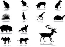54 установленной иконы животных иллюстрация вектора