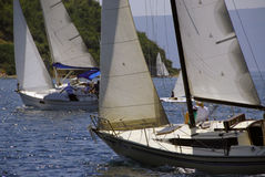 58 regata Fotografia Royalty Free