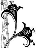 59 utsmyckade blom- dekorativt för konst Royaltyfria Bilder