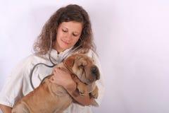 6个动物医生 免版税图库摄影