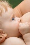 6个婴孩哺乳的月 库存图片