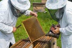 6位蜂农 库存照片