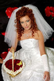 6婚姻 库存图片