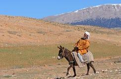 6巴巴里人摩洛哥人 库存图片