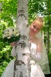 6新娘 库存照片