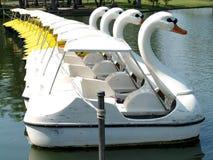 6条小船鸭子 图库摄影