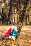6片秋天儿童叶子投掷 库存照片
