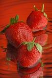 6草莓 图库摄影
