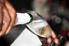 6香槟 库存照片