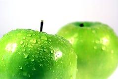 6 äpple - green Arkivbild