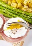 6 αυγά κυνήγησαν λαθραία σειρά Στοκ Εικόνες
