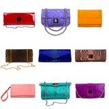 6 θηλυκά πολύχρωμα πορτοφόλια Στοκ Εικόνες