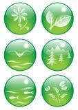 6 κουμπιά φυσικά διανυσματική απεικόνιση