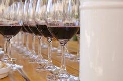 6 σειρές δοκιμάζοντας κρασιού Στοκ φωτογραφία με δικαίωμα ελεύθερης χρήσης