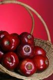 6 σειρές μήλων στοκ εικόνα