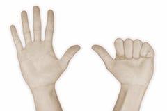 6 χέρι αριθμός έξι Στοκ Φωτογραφία