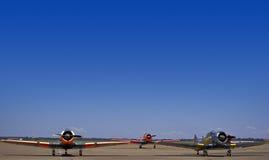 6 американских harvards n группы Стоковые Фотографии RF
