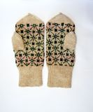6 перчаток Стоковые Фотографии RF