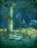 6水下的风景 免版税图库摄影