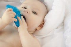 6 7 месяцев младенца Стоковые Фотографии RF