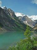 6 alberta Kanada Lake Louise Royaltyfri Fotografi