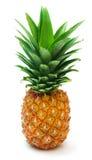 6 ananasy zdjęcie stock