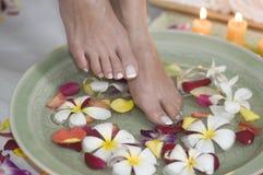 6 aromatherapy fot som kopplar av brunnsorten Fotografering för Bildbyråer