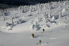 6 backcountry滑雪 库存照片