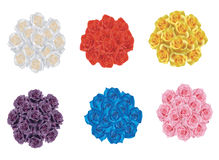 6 Color Rose Bouquet Collection Stock Photography
