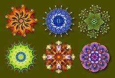 6 energetyczny kwiatu mandalas natury set Obraz Stock