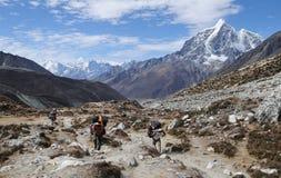 6 himalaya som trekking Arkivfoto
